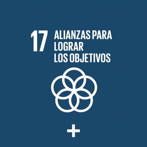 17. Alianzas para Lograr los Objetivos